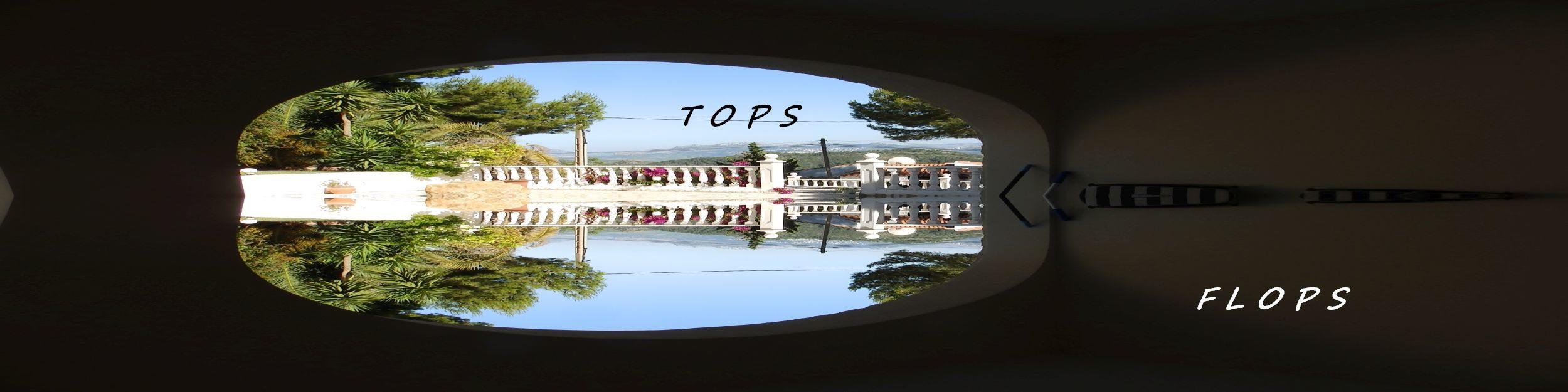 topsflops.eu
